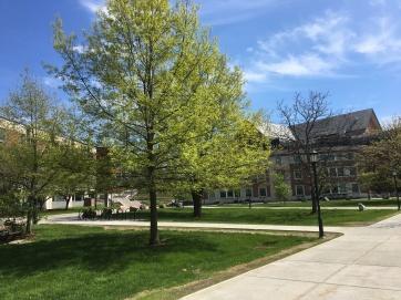 UVM campus